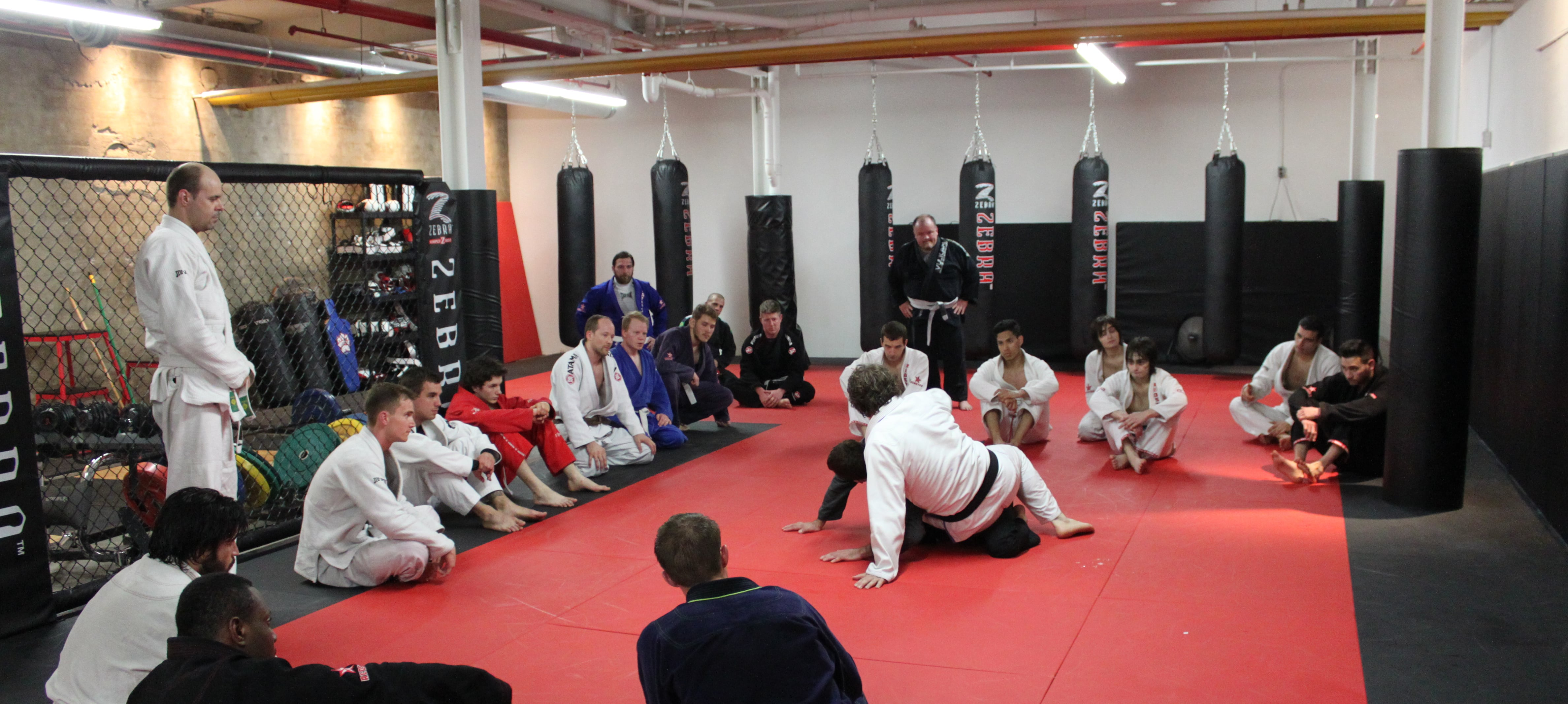 BJJ – All Levels