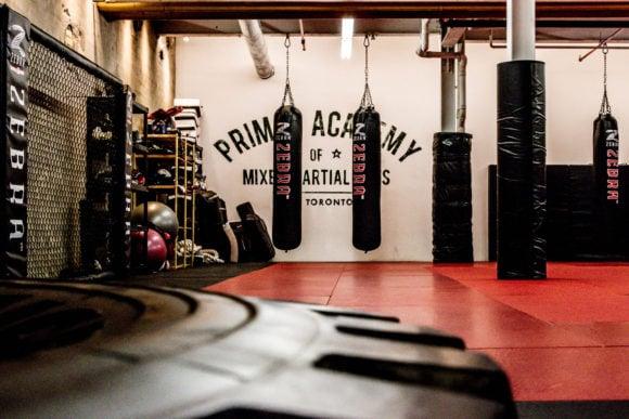 Primal MMA